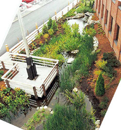 Award winning landscape design projects by the landscape for Award winning landscape architects